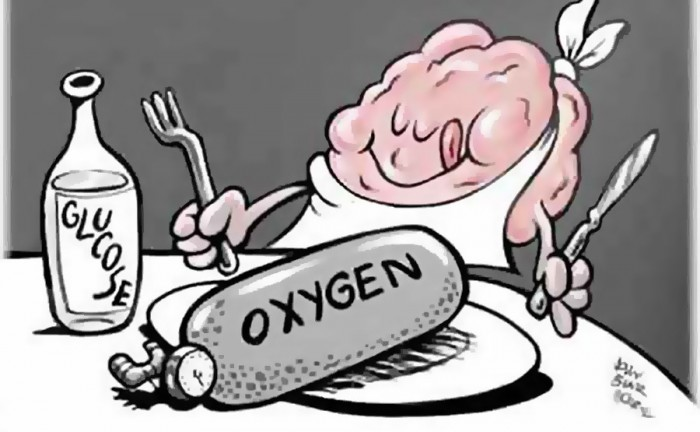 кислород - питание для мозга